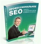 Профессиональное SEO: секреты продвижения сайтов