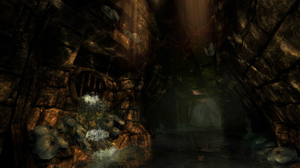 AMNESIA COLLECTION Steam Key Region Free