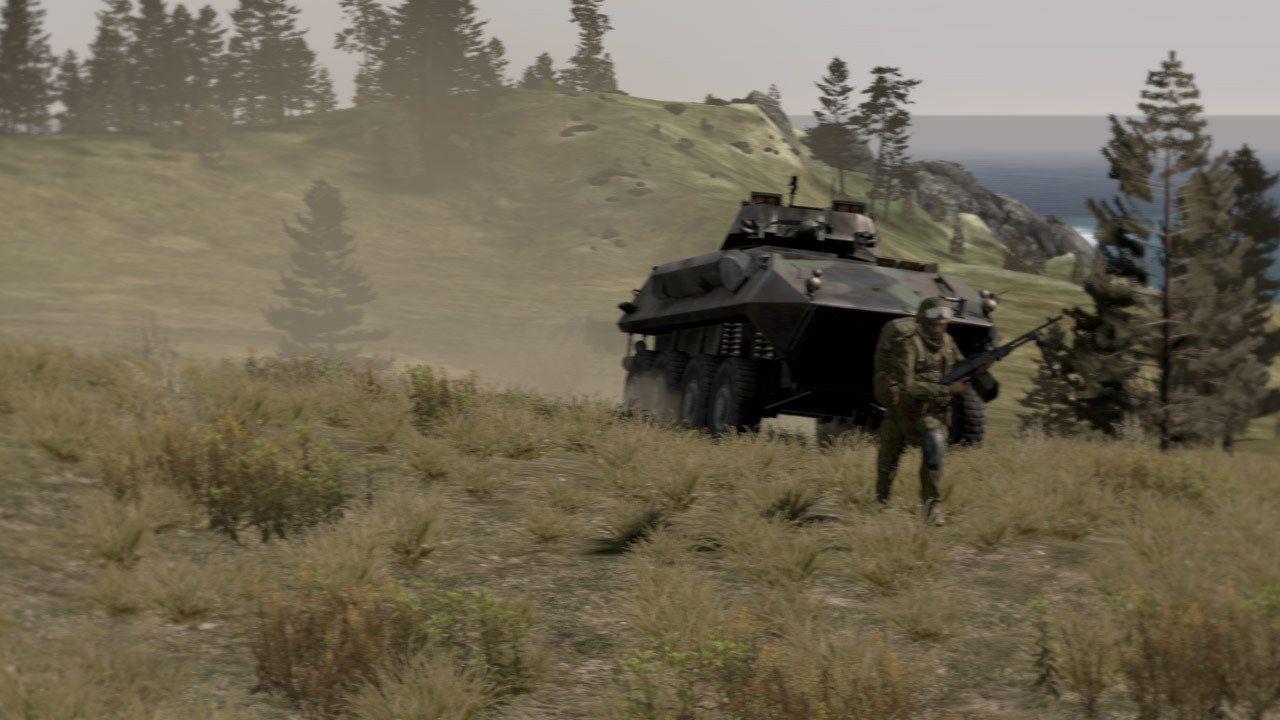Arma 2 (Steam, RU+CIS)
