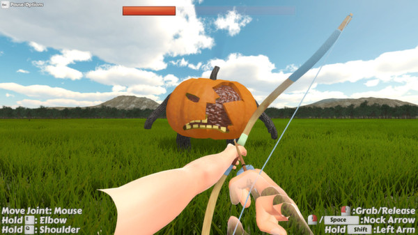 Probably Archery (Steam Key, Region Free)