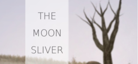 The Moon Sliver (Steam Key, Region Free)