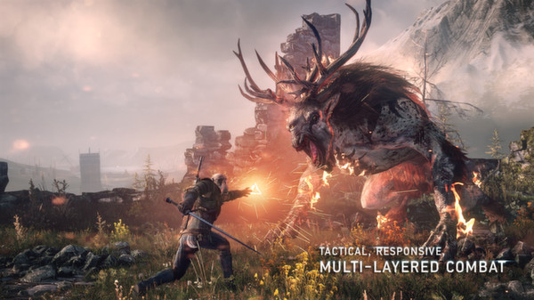The Witcher 3: Wild Hunt (Steam Gift/RU+CIS)