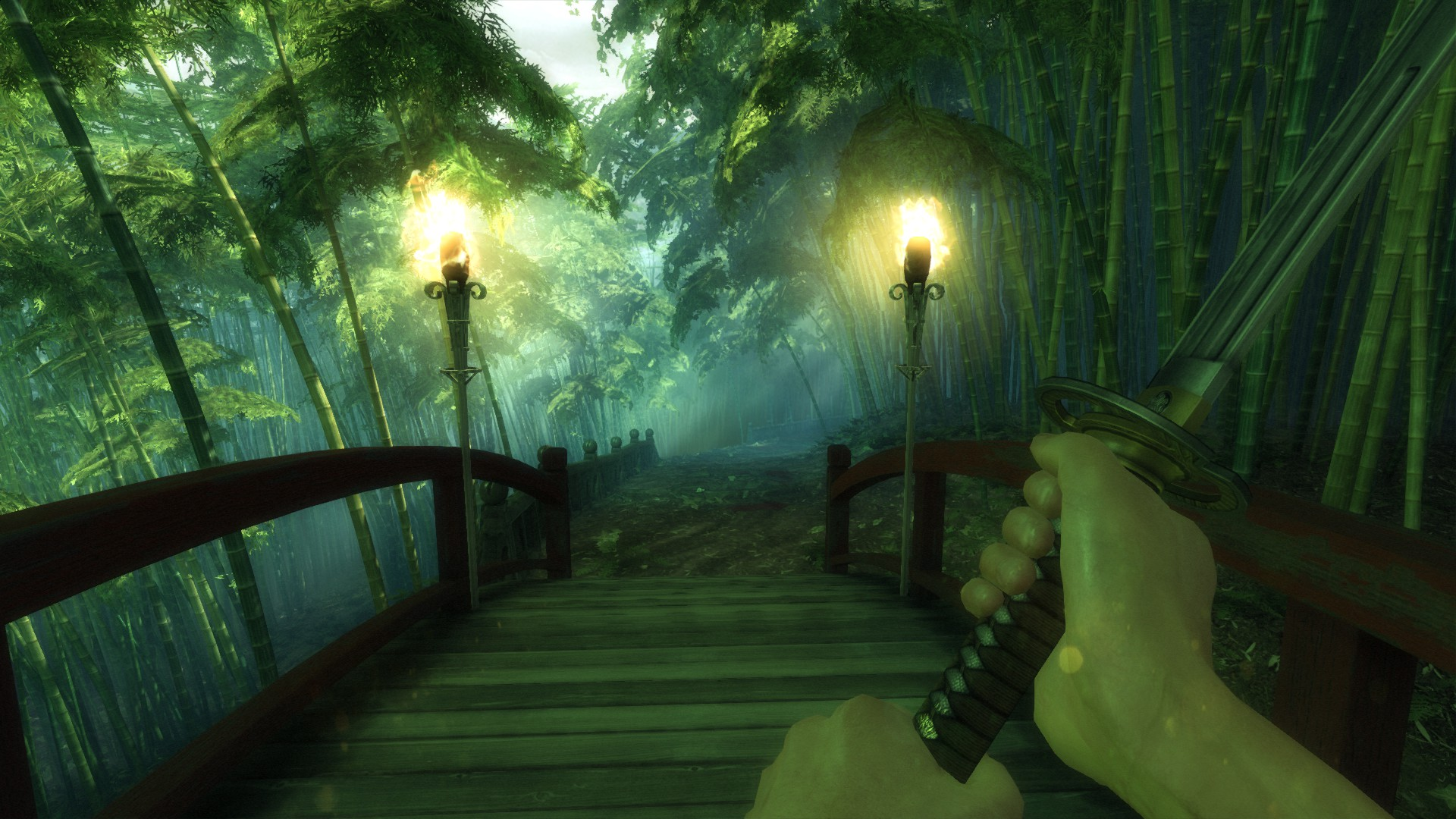 Shadow Warrior (Steam Gift, RU+CIS)