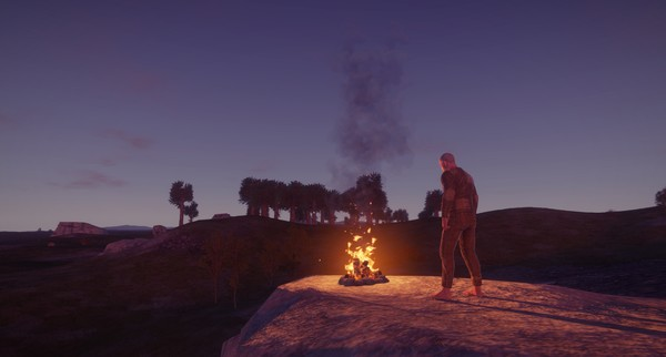 Rust (Steam Gift RU + CIS)