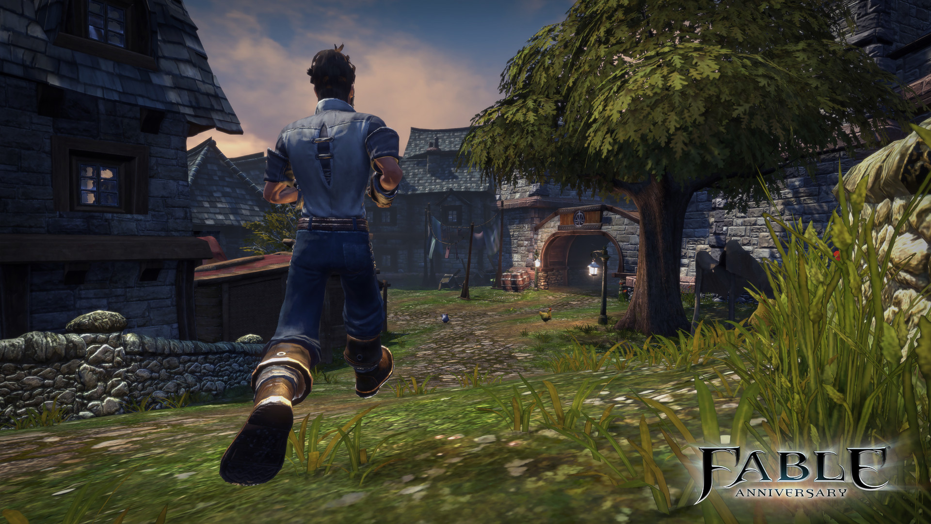 Fable Anniversary (Steam Gift RU+CIS)