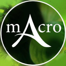 Standalone macro approach and collection for Archeage
