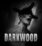 Darkwood (Steam key / Region Free)
