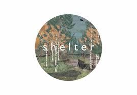 Shelter( Steam GIFT / Region Free )ru/cis