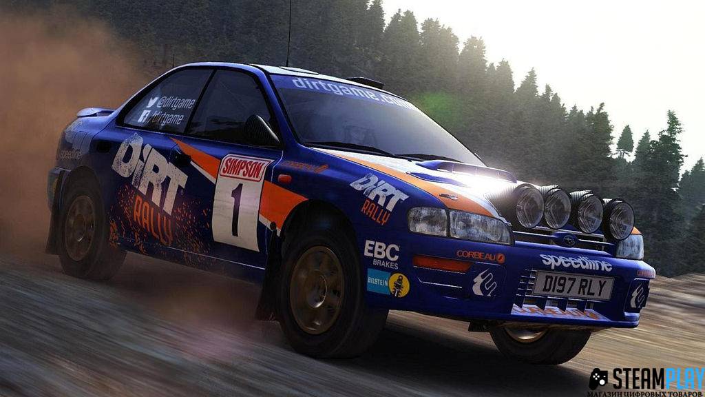 Dirt Rally (Steam KEY/Region free)