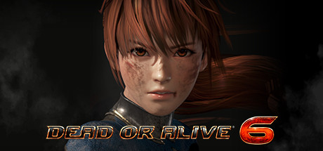 DEAD OR ALIVE 6 with Bonus (Steam, RU)✅ 2019