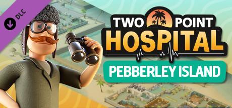 Two Point Hospital: Pebberley Island (Steam RU)&#9989 2019