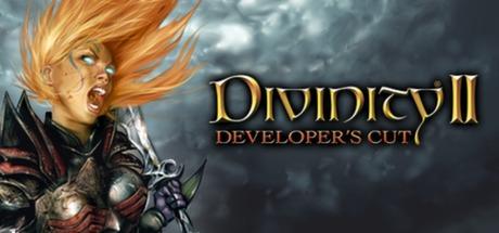 Divinity II: Developer's Cut (Steam RU)✅ 2019