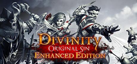 Divinity Original Sin Enhanced Edition (Steam RU)&#9989 2019