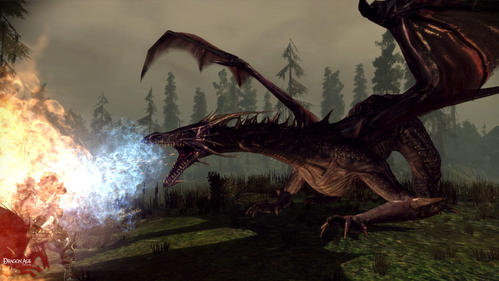 Dragon Age: Origins (steam link Free ROW)