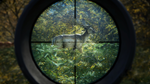 The Hunter: Call of the Wild Fresh Steam Account