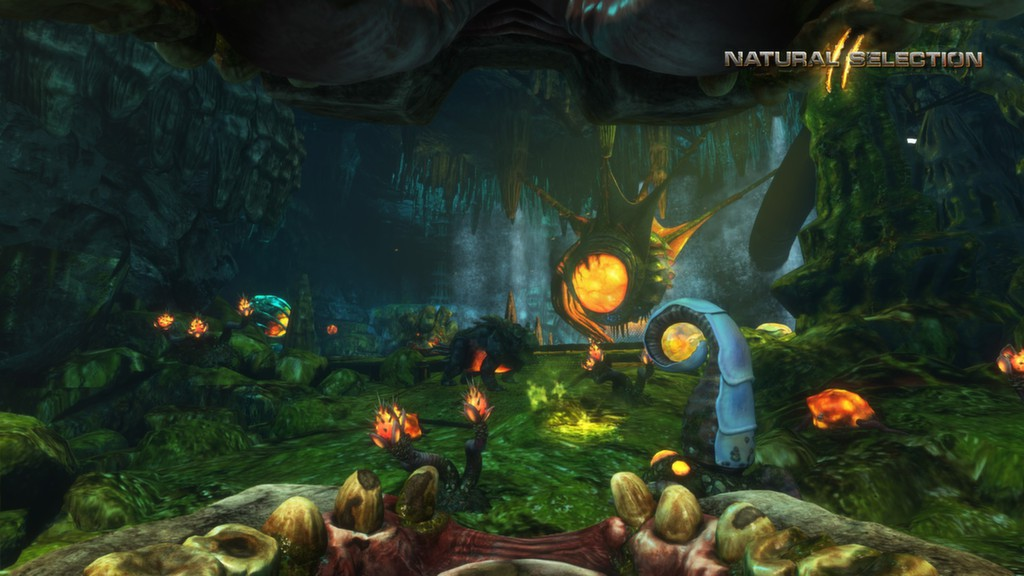 Natural Selection 2 ( Steam / Region Free )