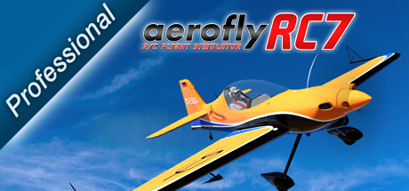 aerofly RC 7 Professional Edition RU Steam Gift