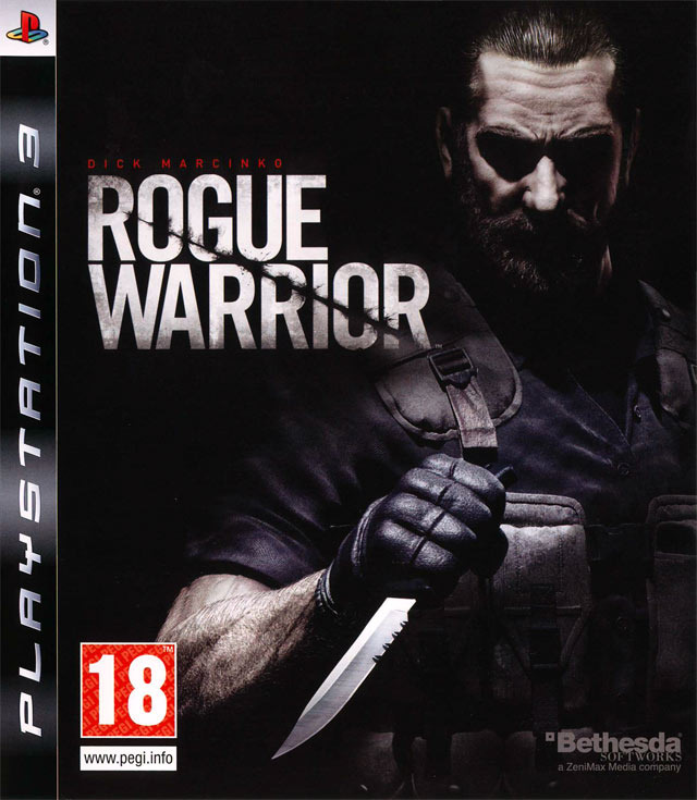 ROGUE WARRIOR (STEAM)