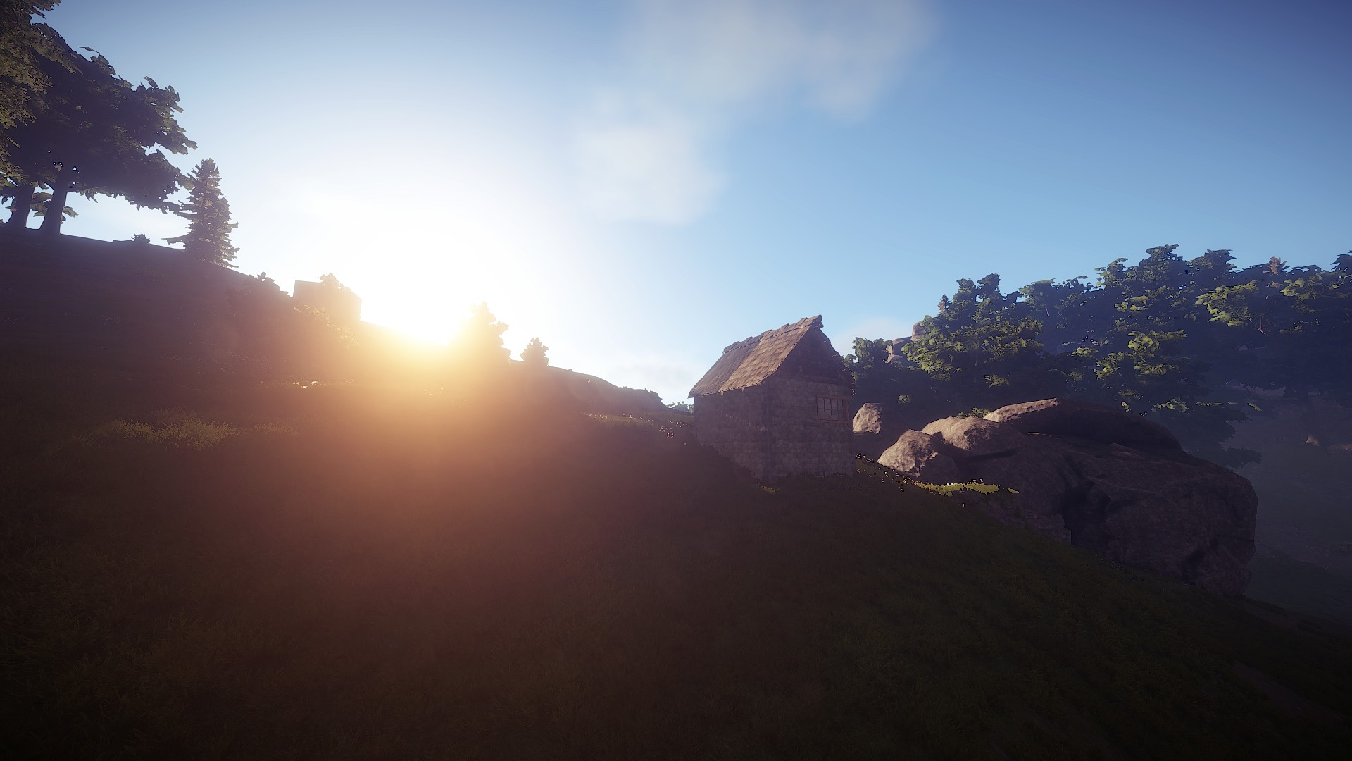 Rust (Early Access) (Steam Key, Region Free)