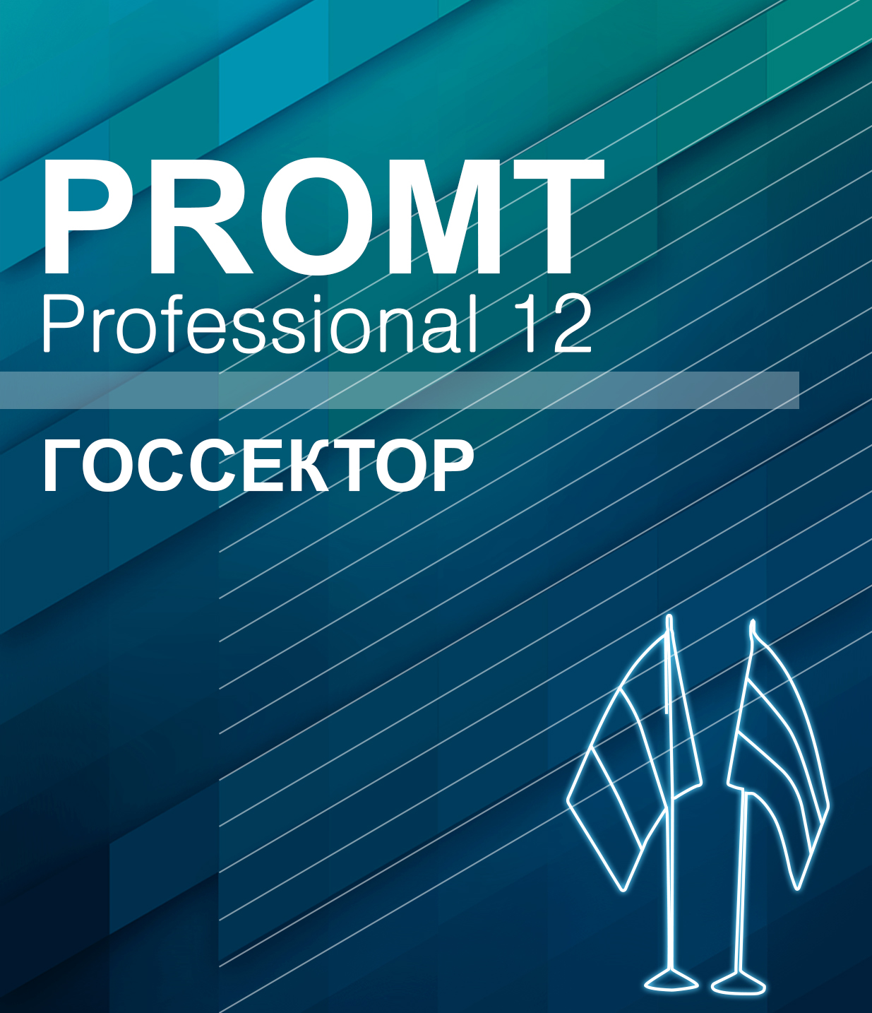 PROMT Professional Multilingual 12, Public Sector