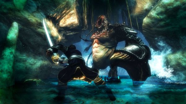 Risen 2: Dark Waters (Steam Gift, Region Free)