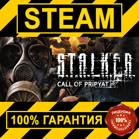 STALKER: Call of Pripyat (STEAM GIFT | RU+CIS)