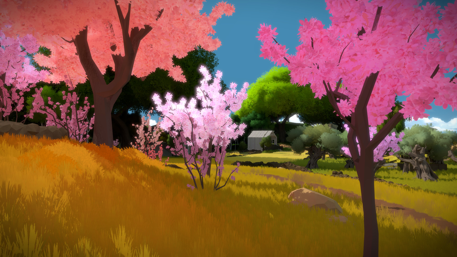 THE WITNESS (STEAM GIFT | RU+CIS)