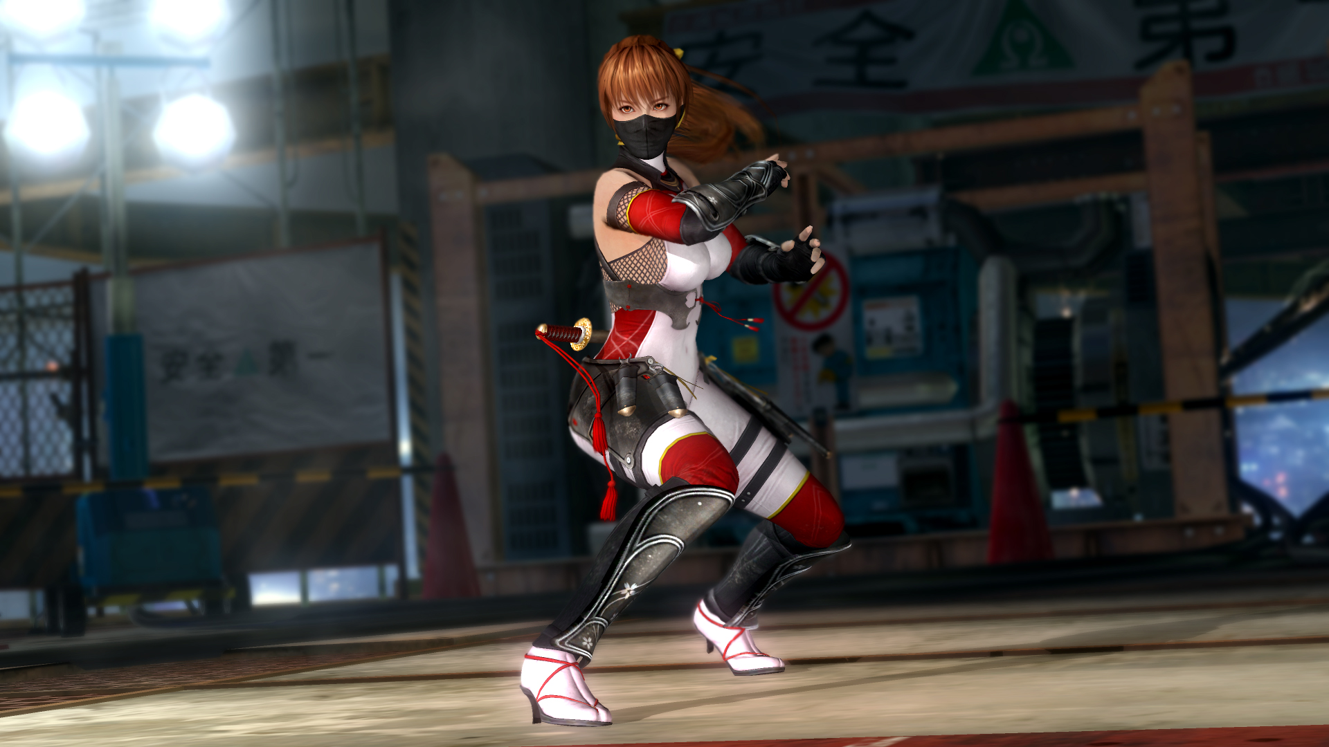 Dead or Alive 5 Last Round Full Game (STEAM | RU+CIS)