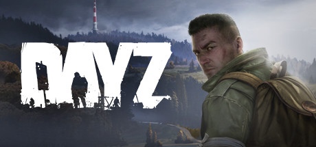 DayZ (Steam Key / Region Free) + Gift