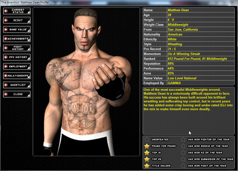 World of Mixed Martial Arts 3 (steam key/region free)