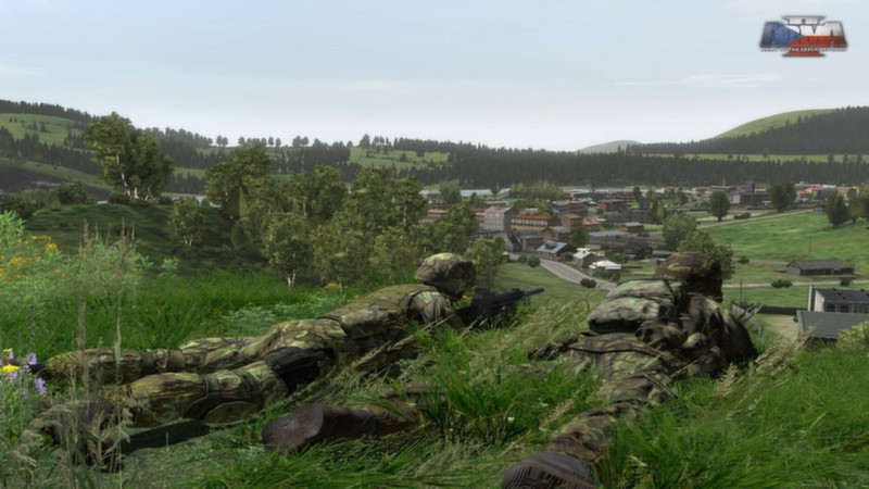 Arma 2: Army of the Czech Republic (DLC) STEAM / RU/CIS