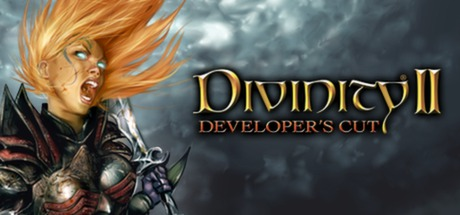 Divinity II: Developer´s Cut (STEAM GIFT / RU/CIS)