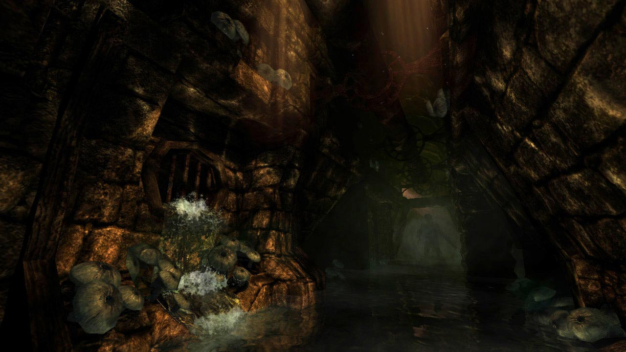 Amnesia: A Machine for Pigs + The Dark Descent (STEAM)