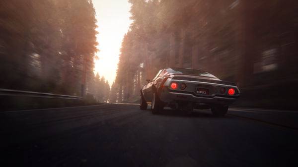 GRID 2 (Steam gift \ RU+CIS)