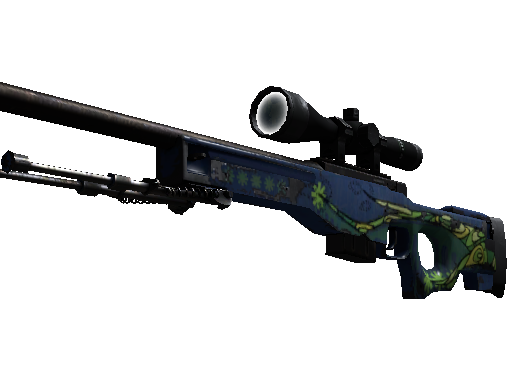 CS: GO - Random AWP + Bonus Review