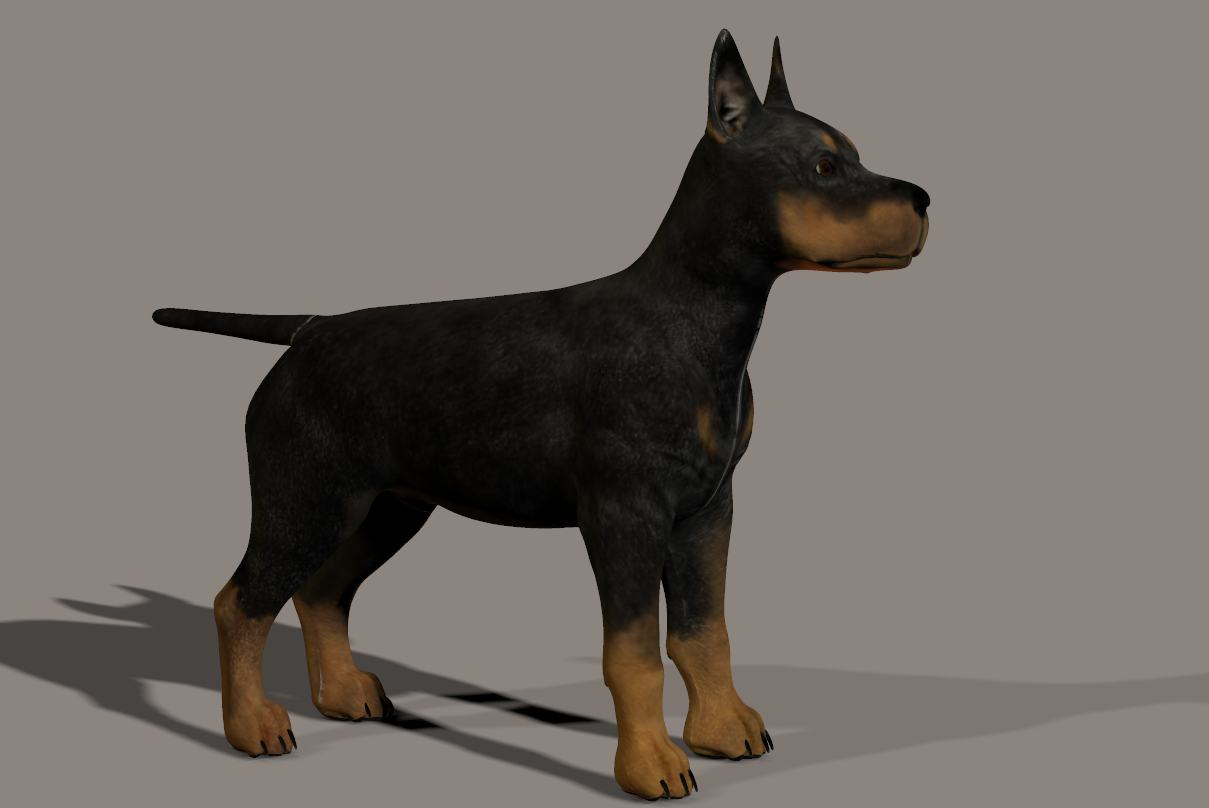 3D model of the dog