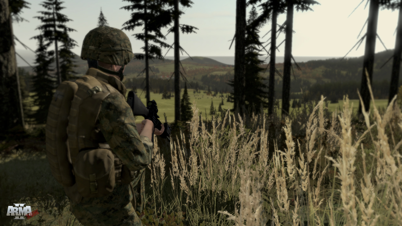 Arma 2: Combined Operations (Steam Gift | ROW)