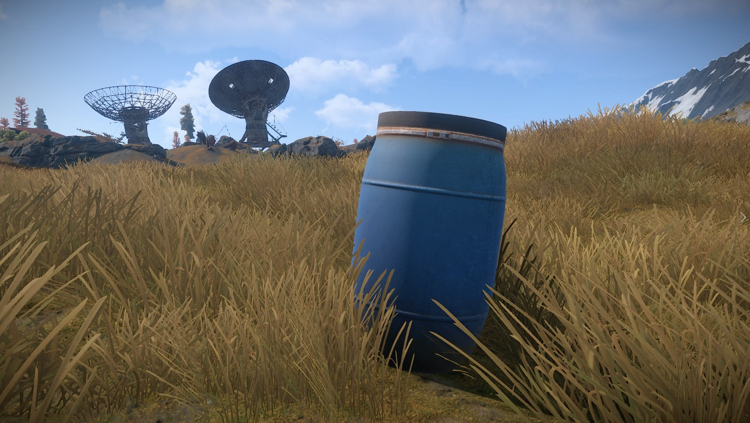 Rust (Steam Gift) + BONUS