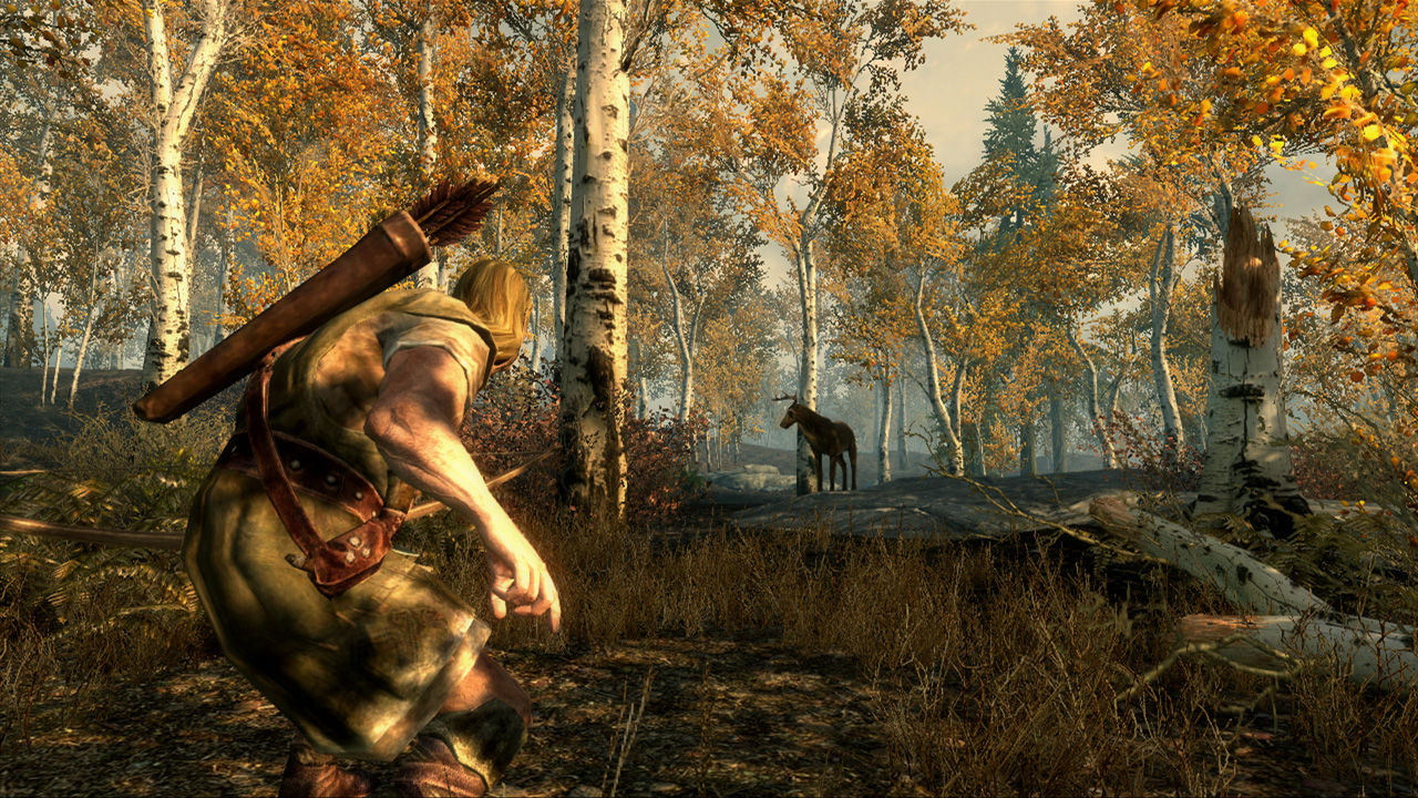 The Elder Scrolls V: Skyrim (Steam Gift) + БОНУС