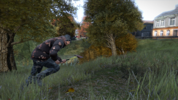 Steam account - DayZ