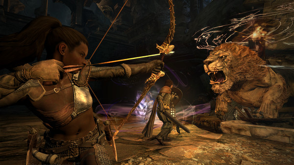 Dragon´s Dogma: Dark Arisen (Steam key/RU)