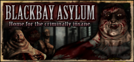 Blackbay Asylum (Steam key/Region free)