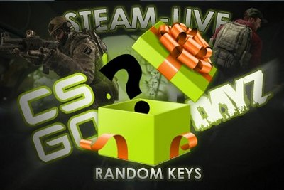 Random Key (GTA V - 317, CS: GO - 249) update. 27.01