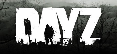 DayZ Standalone Steam (Account)