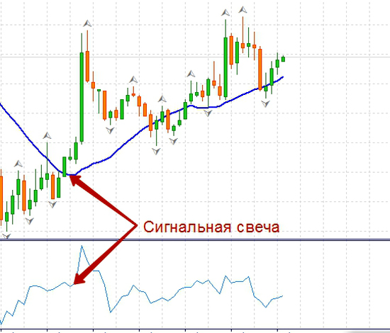 Forex 1 pip per day