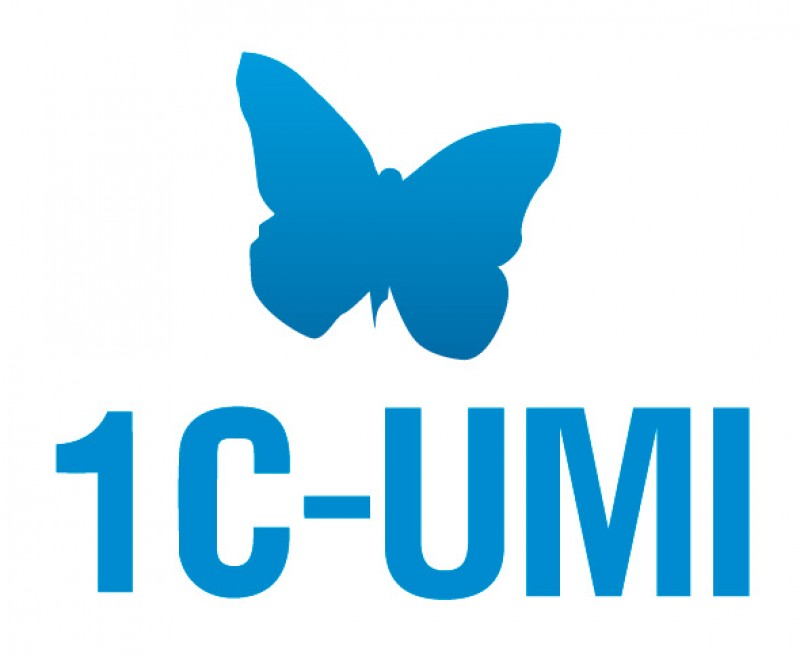 Promo code 1C-UMI for 51% discount + domain as a gift