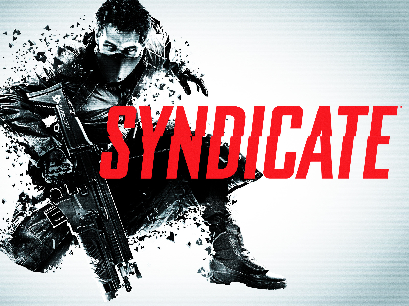 Syndicate (Warranty + Bonus ✅)