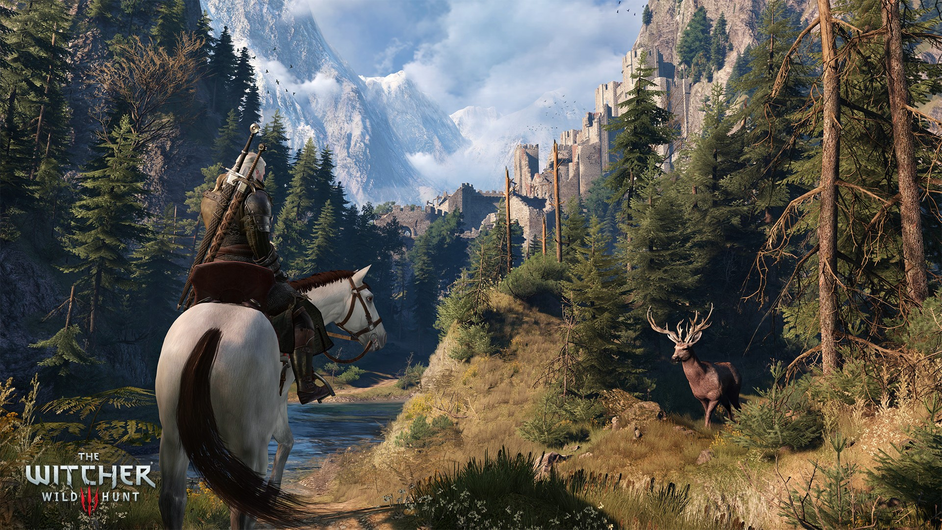 The Witcher 3: Wild Hunt (GOG key RU,CIS)