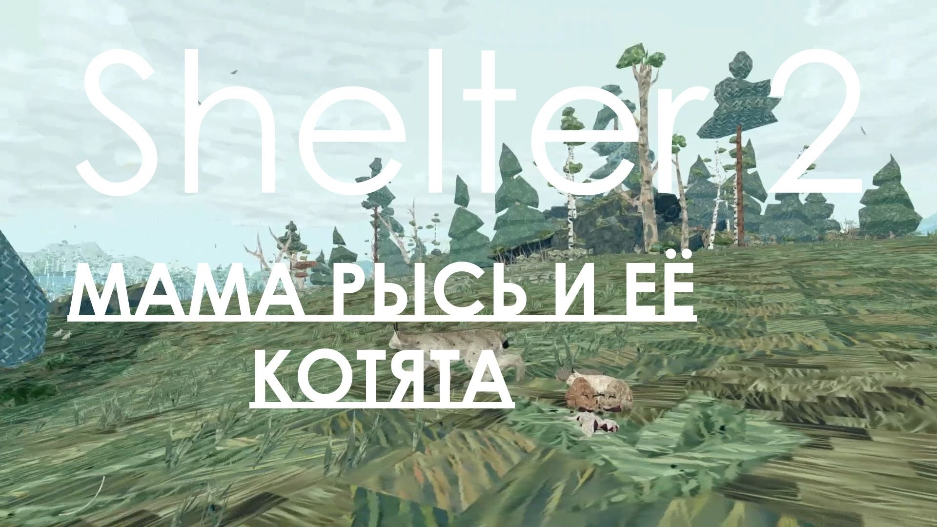 Shelter 2   STEAM KEY| REG. FREE