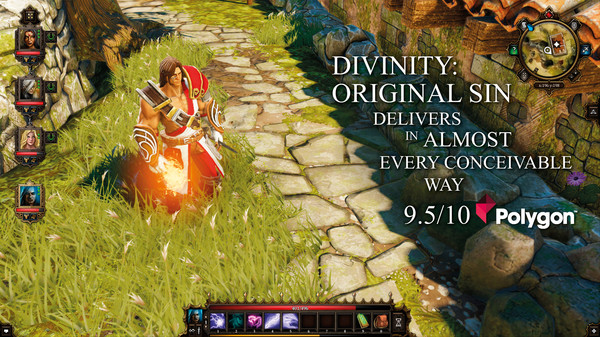 Divinity: Original Sin Enhanced Edition (Steam RU+CIS)